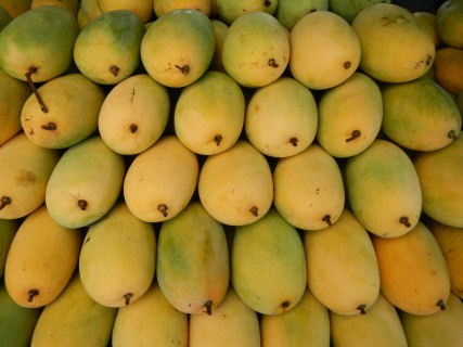 Mango is good for your health, says the nutritionist