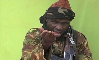Shekau could be hiding in Sambisa forest, says defence minister