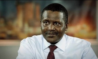Dangote promises to stabilise cement prices