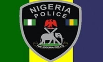 Police nab man with fresh human head