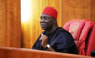 Ekweremadu opposes military action in Gambia