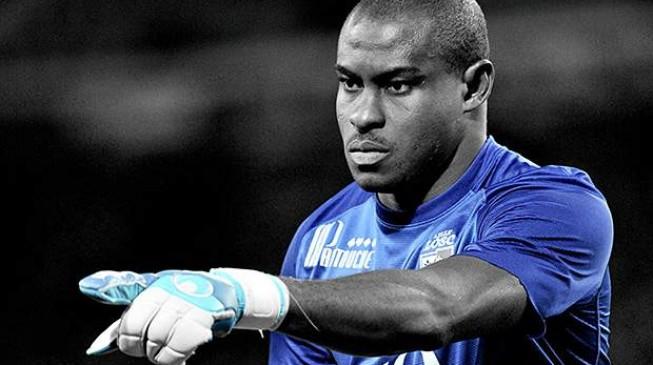 Enyeama wins historic Ligue 1 award