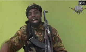 Boko Haram declares Gwoza 'Islamic caliphate'