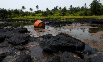 Buhari initiates process for cleanup of Ogoniland