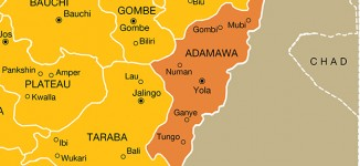 Two killed in Boko Haram attack in Adamawa