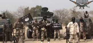 External forces have taken advantage of Boko Haram crisis, says Irish envoy