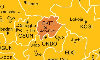 Man arrested with fresh human head in Ekiti
