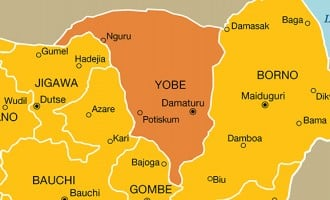 Army: Boko Haram attack averted in Yobe, many insurgents killed