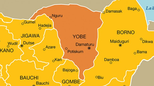 Just in: 48 of 94 missing Yobe school girls return - Yobe Govt
