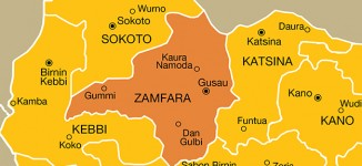 Six villagers shot dead as gunmen abduct children of Zamfara rep
