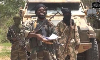 Nigeria an Ebola-free country, the ceasefire or crossfire… 10 things about last week