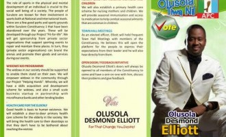 Will Desmond Elliot, Kate Henshaw, 9ice… win in 2015?