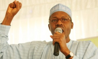 Buhari: 2015 elections 'a watershed' for Nigeria