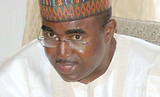Marwa robbed of PDP ticket, says support group