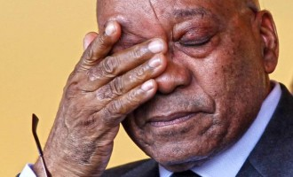Zuma, ex-South African president, loses son