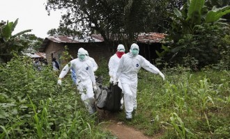 Ebola: Liberian health workers demand pay rise