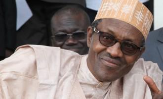 PDP: APC planning fake opinion poll for Buhari