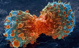 Scientists find new tool to fight cancer