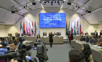 OPEC pegs oil output target at 30 million bpd