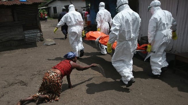 IMF to blame for health gaps in 'Ebola nations'