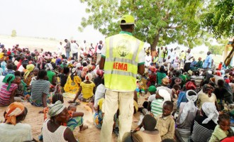 NEMA DG defends procurement of N3.1bn relief materials