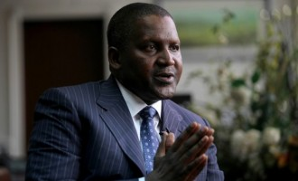 Despite losing $7.8bn, Dangote makes case for local investment