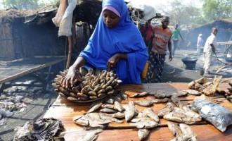 Boko Haram: Borno hit by 'unprecedented fish shortage'