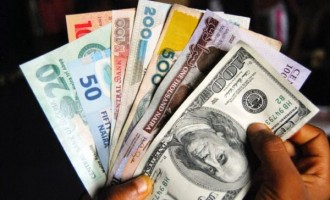 Naira at 43-year low after CBN's BDC forex ban