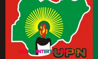 UPN presidential candidate, Godswill, sues INEC