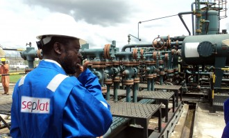 Seplat Petroleum: Profit drops with revenue, cost increases