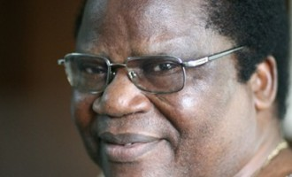 Tony Momoh: A professional in politics?