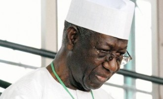 Anthony Anenih: A personal and political portrait