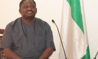 Buhari will balance appointments, says Adesina