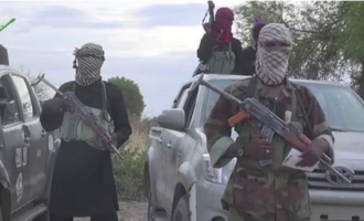 Insurgents 'kill eight soldiers' in Yobe