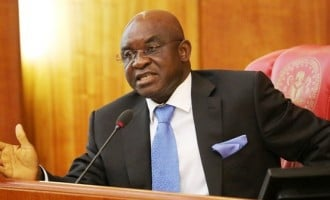 The fear of God will guide me, says David mark