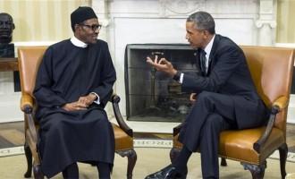 The 'return' of Boko Haram under Buhari