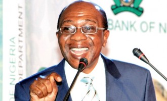 We will have created 1m agric processing jobs by 2021, says Emefiele