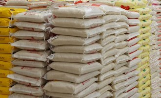 Dangote Rice targets 14 states, to empower local farmers