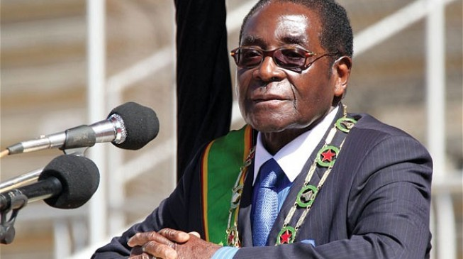 Mugabe 'granted immunity' from prosecution