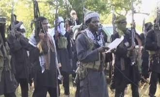 Boko Haram taunts army: Your 40 days over but we're still in Sambisa