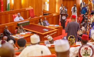 Fuel scarcity: Senate jacks up subsidy budget