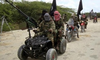 Boko Haram burns down Borno village, kills two
