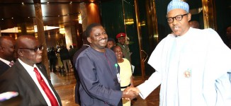 Femi Adesina: 'Okechukwu' Buhari won't abandon south-east