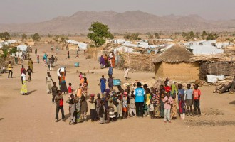 UN slams Cameroon over forced return of 2,600 Nigerian refugees