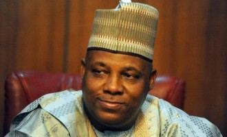 Shettima: This is the best Christmas I've witnessed