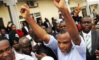 Fani-Kayode: Nnamdi Kanu is Ojukwu and Zik rolled into one