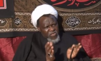 After Falana's 'rare meeting' with Zakzaky, Shi'ites cooperate with panel probing army