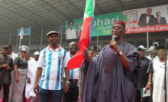 Oyegun only relevant during elections, says ADP chairman