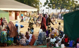 5.8 million Nigerians 'may face acute food shortage'