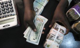CBN to increase FX sales to us this week, says BDC president
